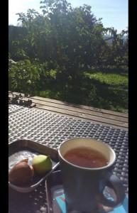 Un moment de nostalgie de fin d'été, un oolong à la figue dégusté avec les dernières figues de mon jardin.