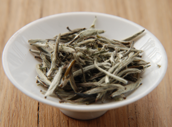 Thé blanc : feuilles de Yin Zhen