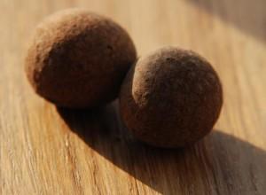 Longanes (fruit du dragon) pour le Bā bǎo chá