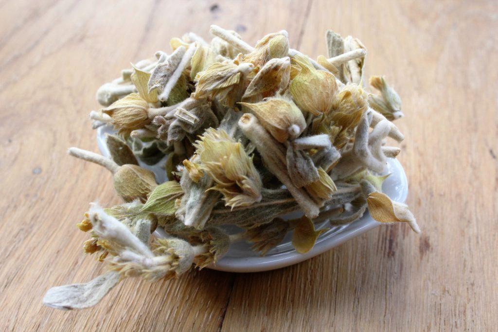 Mountain tea, thé des montagnes grec